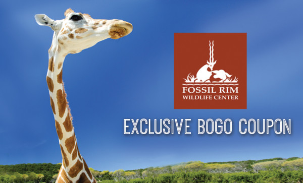 fossil rim - buy one  get one free coupon