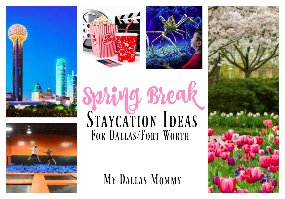 dallas and fort worth spring break staycation ideas