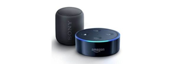 echo dot sony xb10 portable wireless speaker with. Black Bedroom Furniture Sets. Home Design Ideas